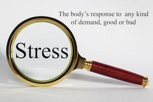 Hvad er stress - stressrespons Vibeke Fraling