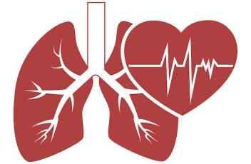 Hjerte og lunger finder rytmen