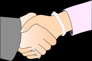 Handels- og abonnementsbetingelser Vibeke Fraling