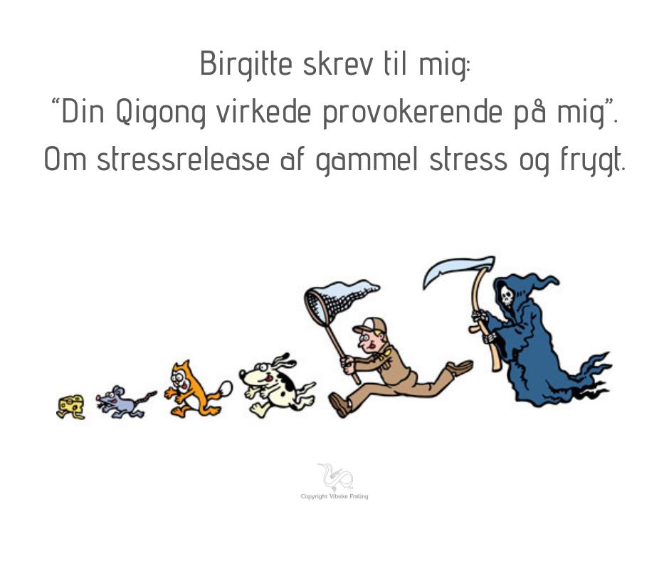 Stressrelease – med kinesisk medicin og vestlig naturvidenskab i en moderne tid